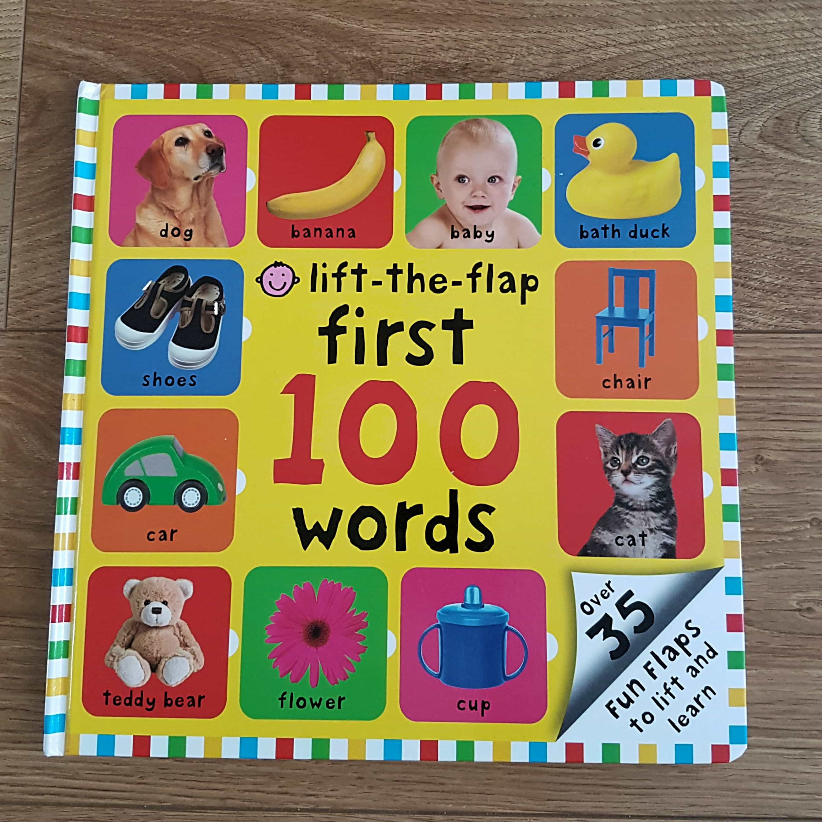 LIft-the-flap 100 First Words Book