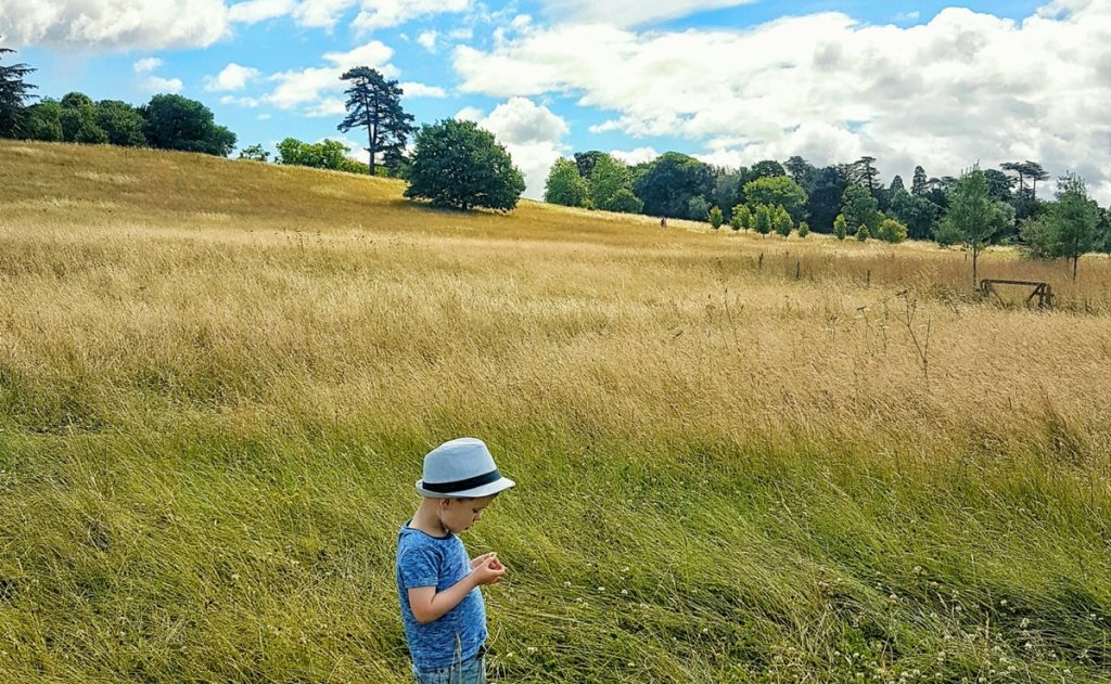 Boy with autism in a field