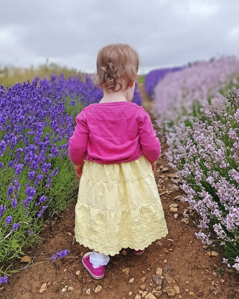 Dress in the Lavender