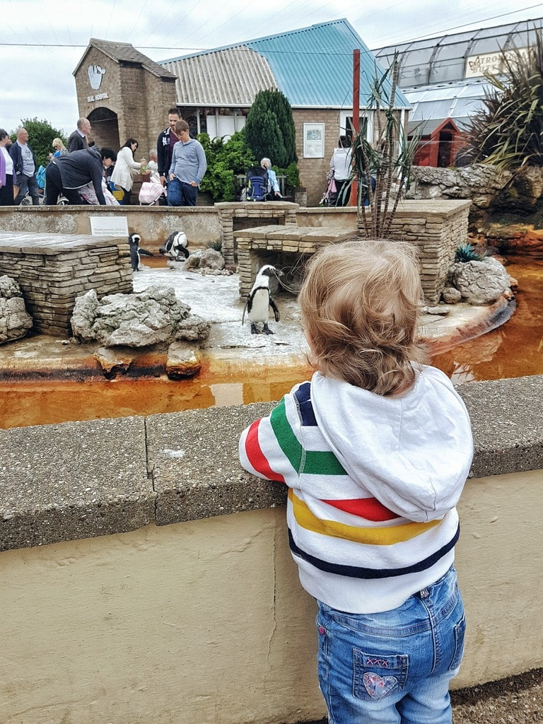 Natureland Skegness