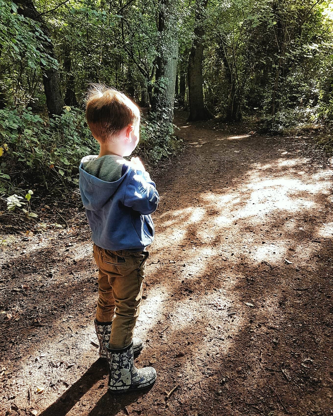 Boy in the sunshine in a wood by Somoeone's Mum