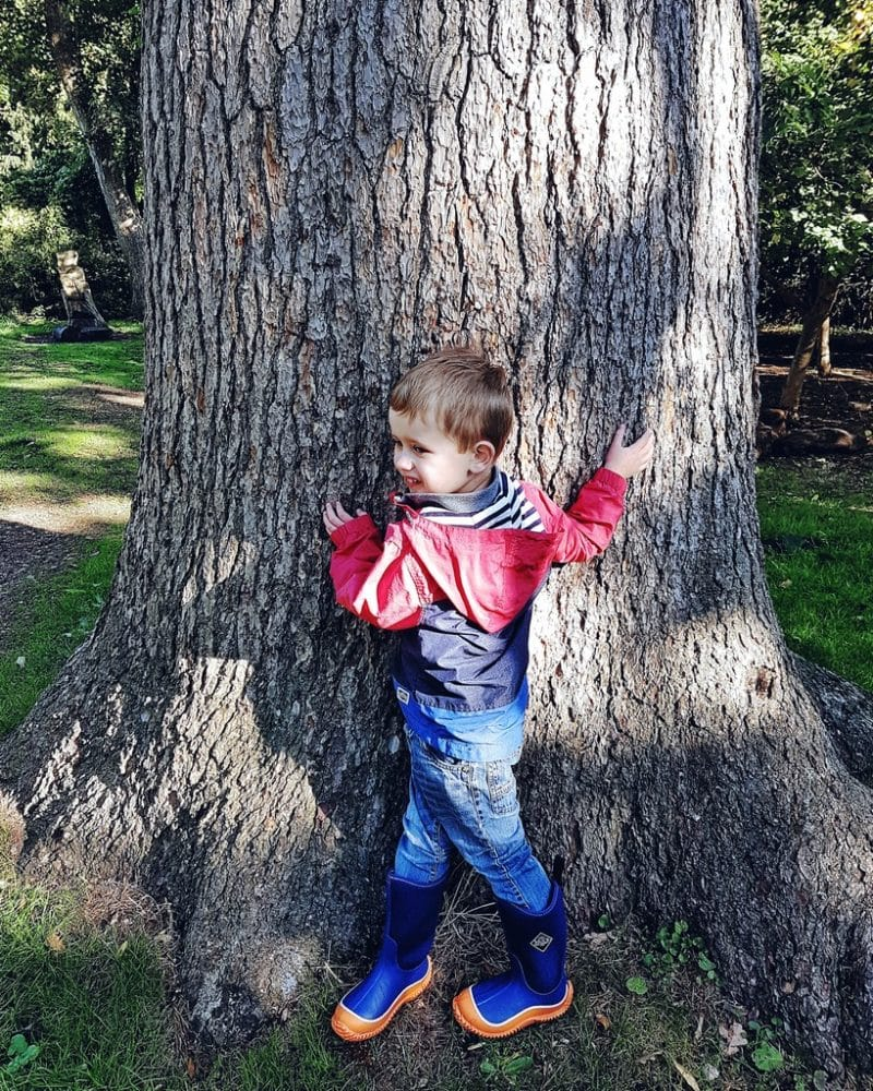 Persil Wild Explorers - boy by a tree