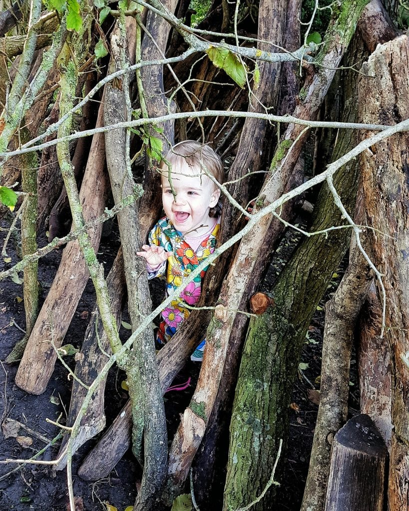 Outside Fun with Persil Wild Explorers App