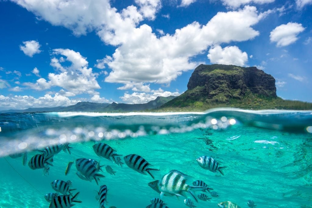 Scene from Mauritius with mountain, sea and fish underwater