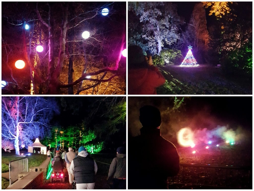 Westonbirt Enchanted Christmas lights