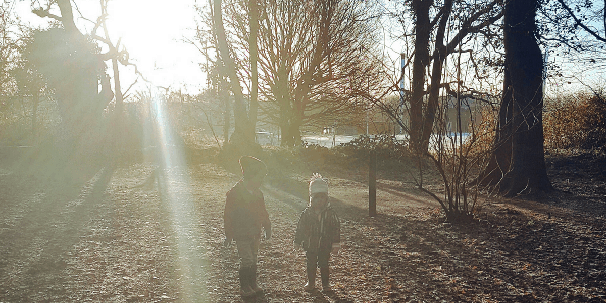 A little boy and little girl in a wood, surrounded by sunshine, almost in silhouette