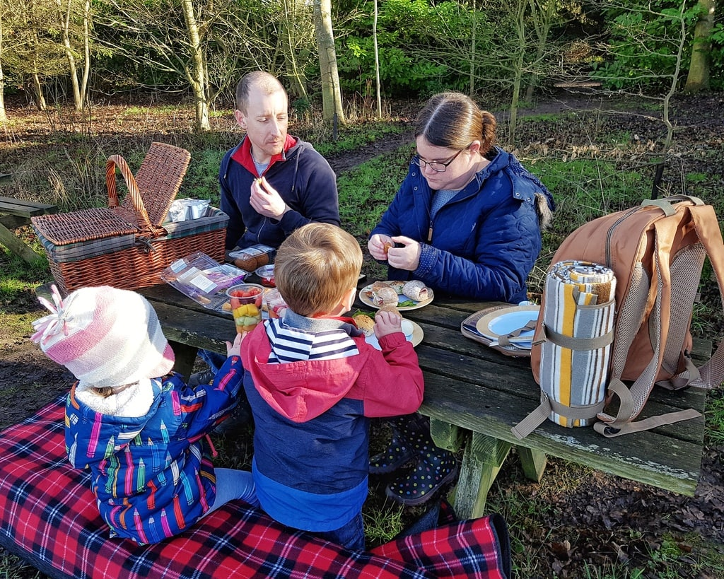 Our family picnic staycation