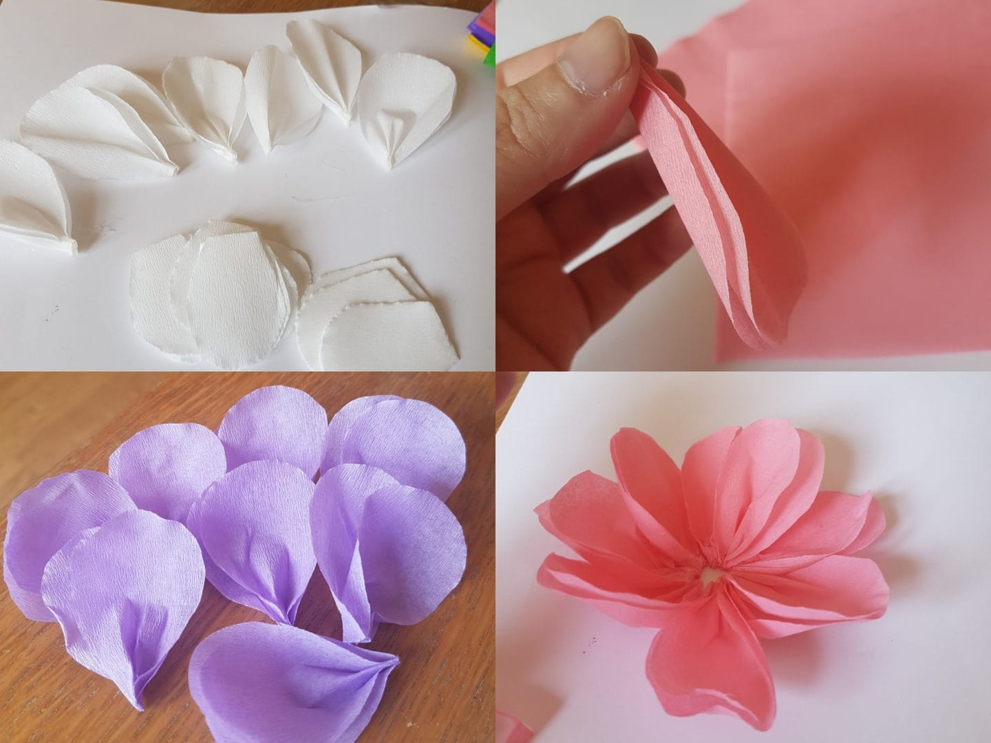 Final petals for paper flowers craft