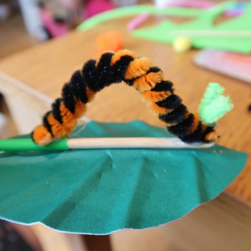 Wiggly caterpillar for life cycle of a butterfly craft
