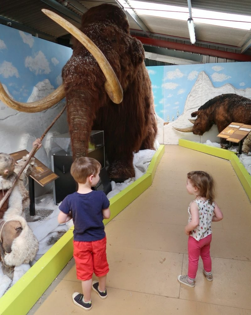 Biggest and Littlest looking at a model Mammoth at All Things Wild Evesham