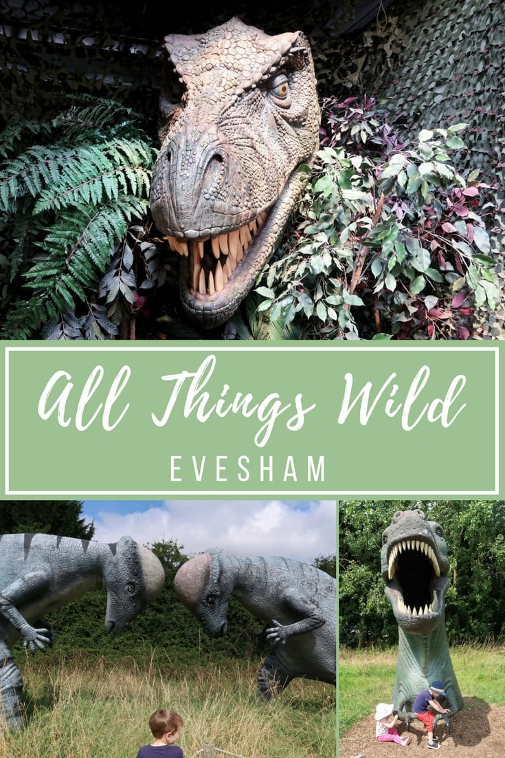 All Things WIld Evesham Review