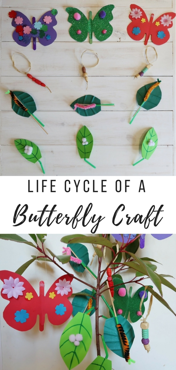 Lifecycle of a Butterfly Craft. How to make four different decorations to create your own lifecycle of a butterfly tree.