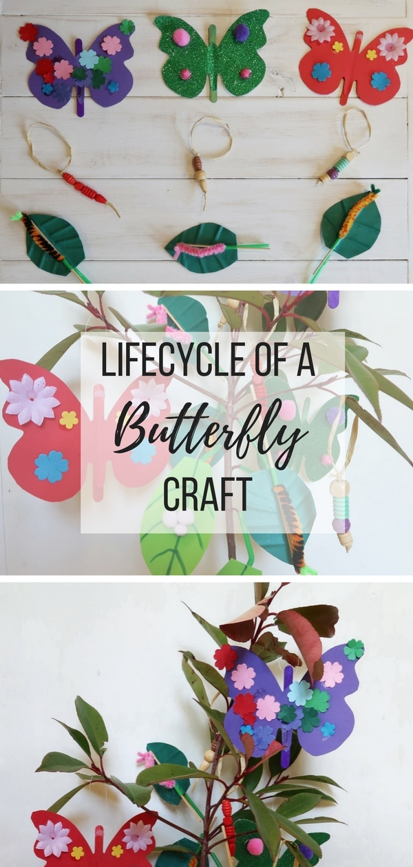 Lifecycle of a Butterfly Craft. How to make four different decorations to create your own lifecycle of a butterfly tree. A great #educational #craft for #kids #butterfly