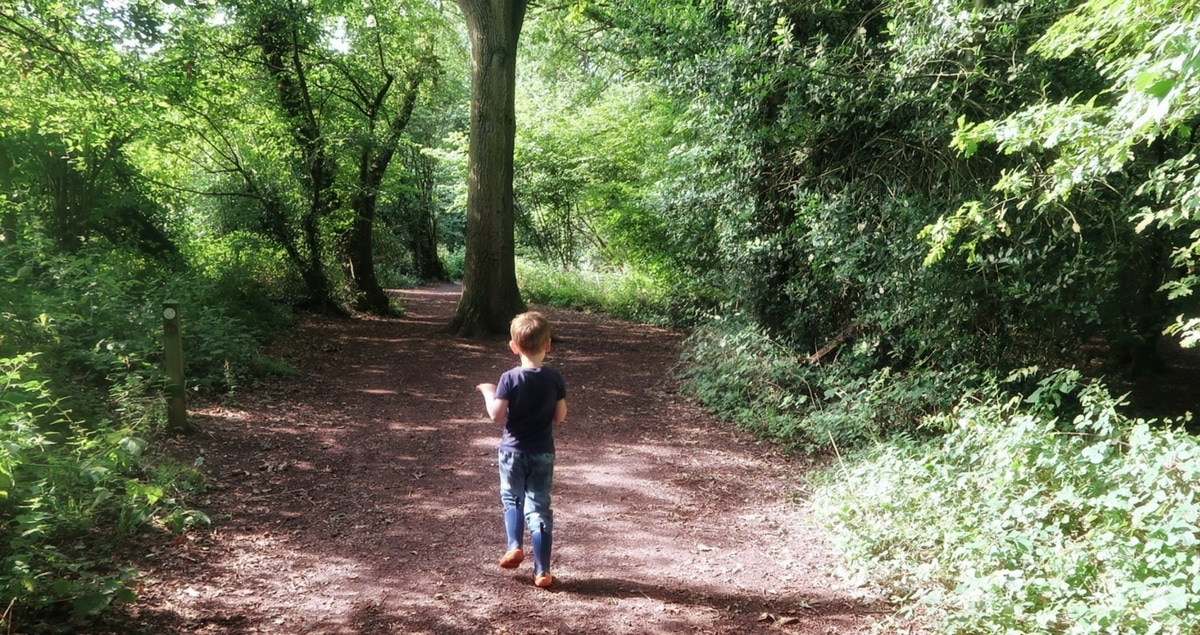 Boy runs through woods with huge tree in front of him