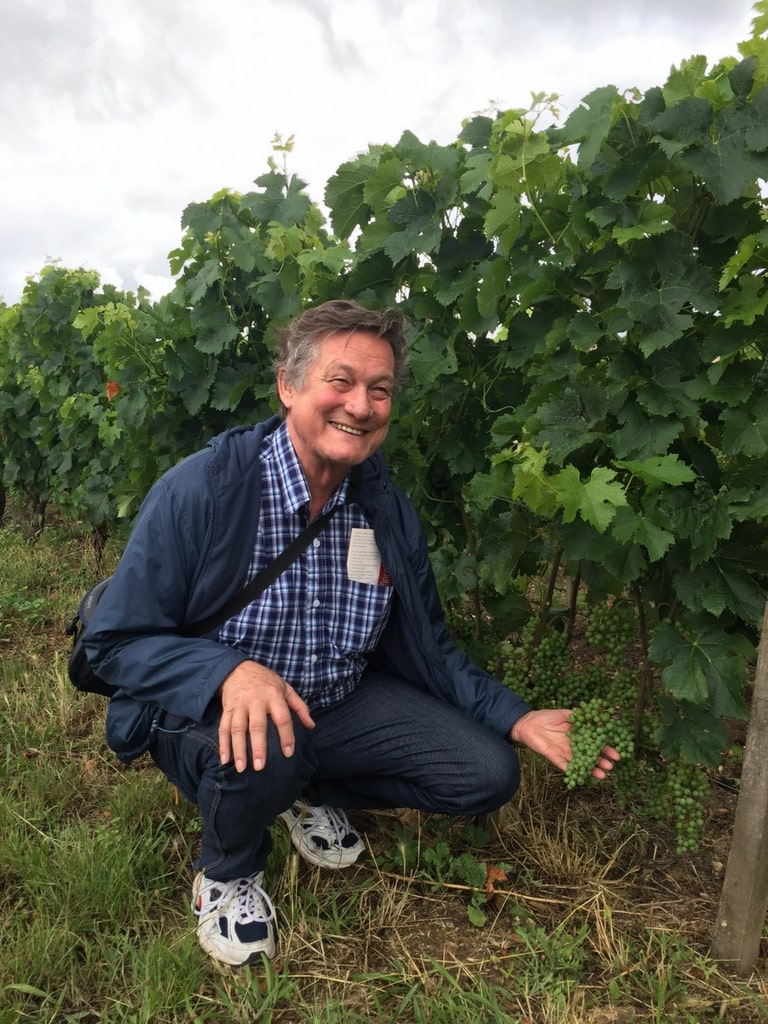 A man inspecting a vine in France - rent a vine.