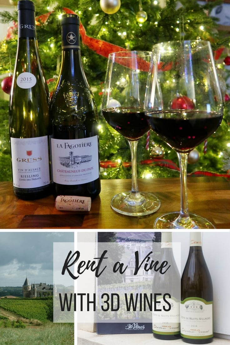 Rent a Vine with 3D wines - learn about the ultimate 'wine club' which allows you to sponsor a vine in France and visit the Vineyards.