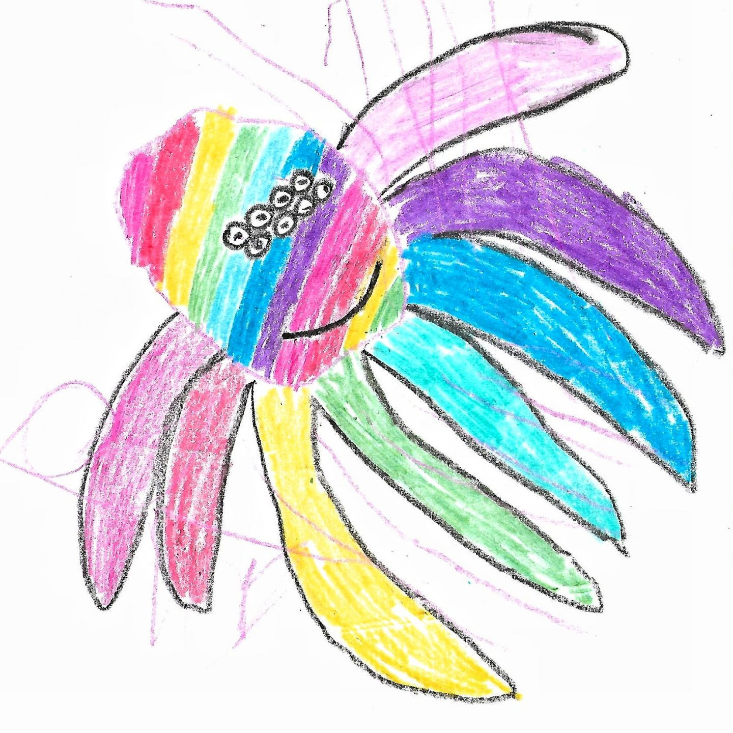 A child's drawing of a rainbow spider - the petplan dream pet campaign for pet insurance