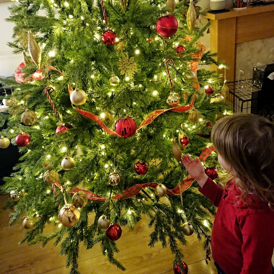 A small girl from behind, looking at a Christmas tree