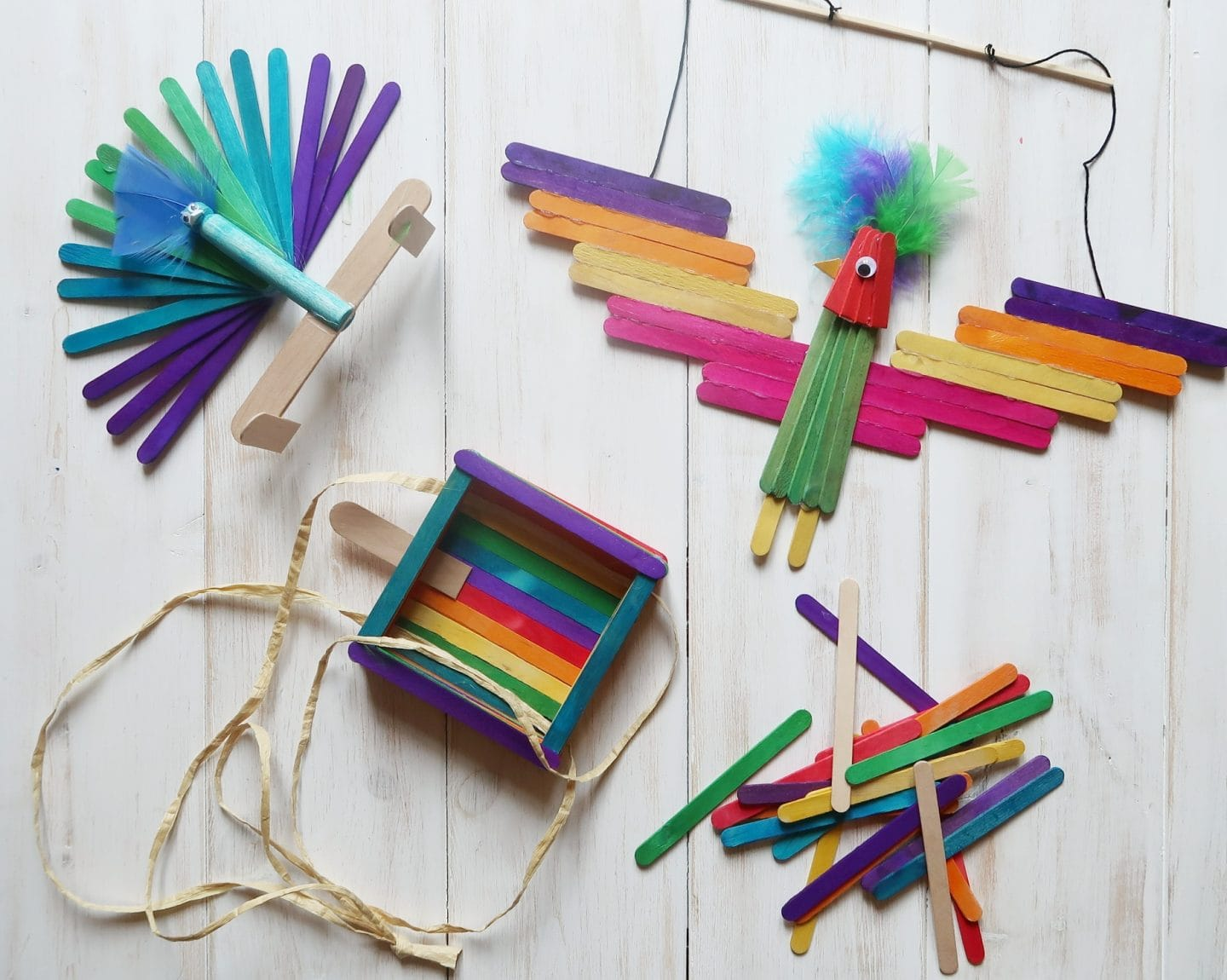 Rainbow Lolly stick crafts - birds