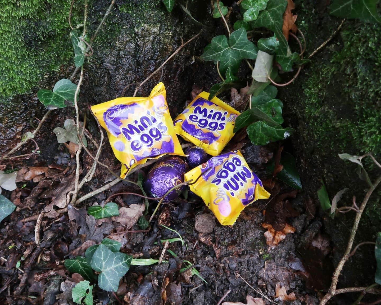 Cadbury mini eggs hidden next to some ivy.
