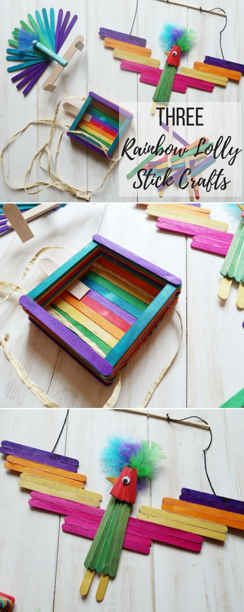 3 Rainbow Lolly Stick Crafts - A bird-feeder, a parrot decoration and a clothes peg peacock, all made with colourful popsiclelolly sticks.