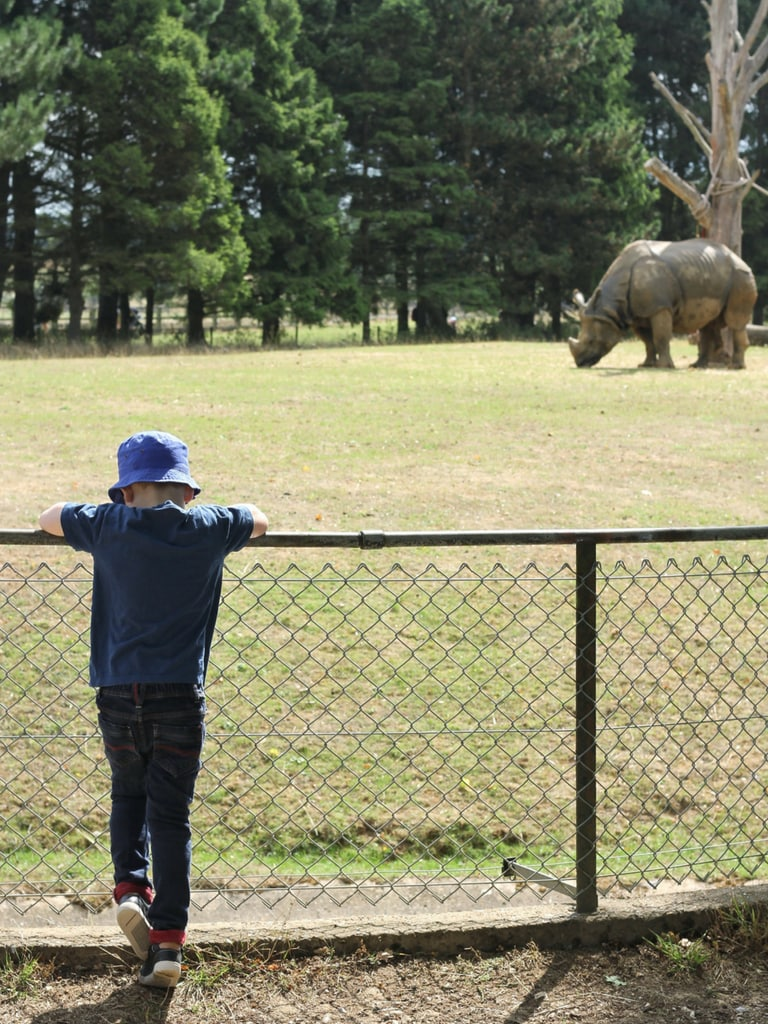 Biggest with rhino and Whipsnade zoo