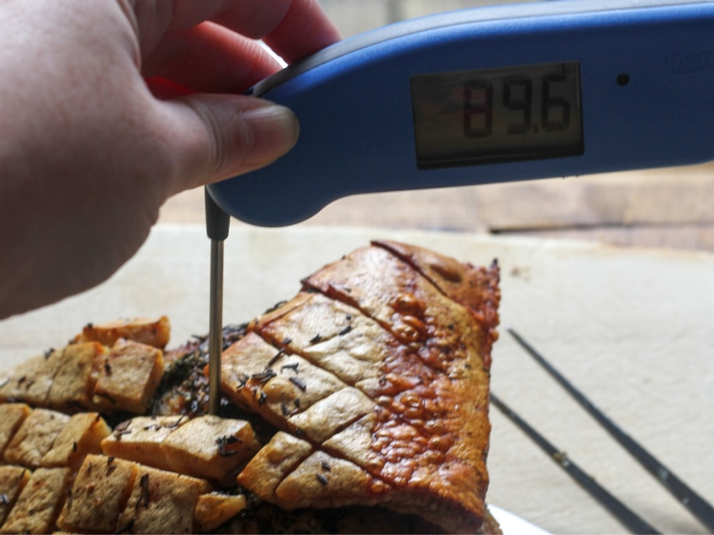 Thermapen in use