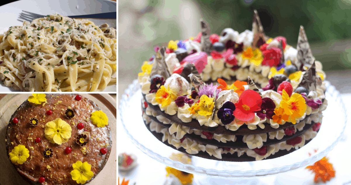 Collage of foods with cake and pasta