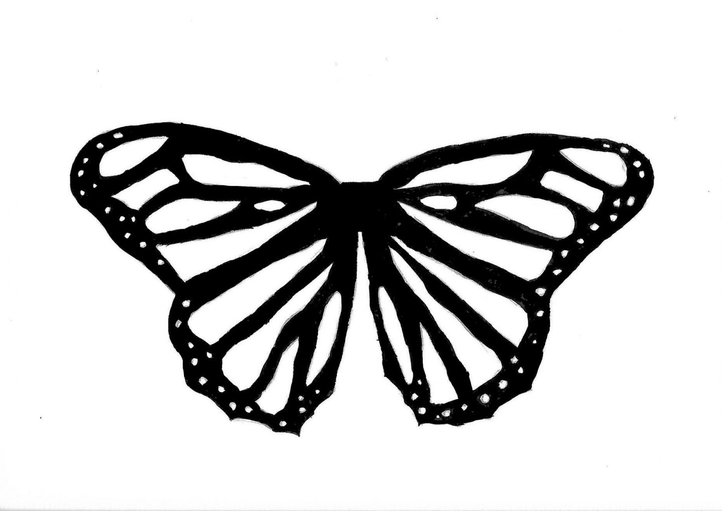 A black and white butterfly template